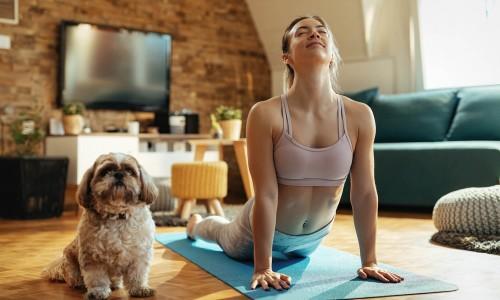 5 Λόγοι για να κάνετε διαλογισμό με το σκύλο σας